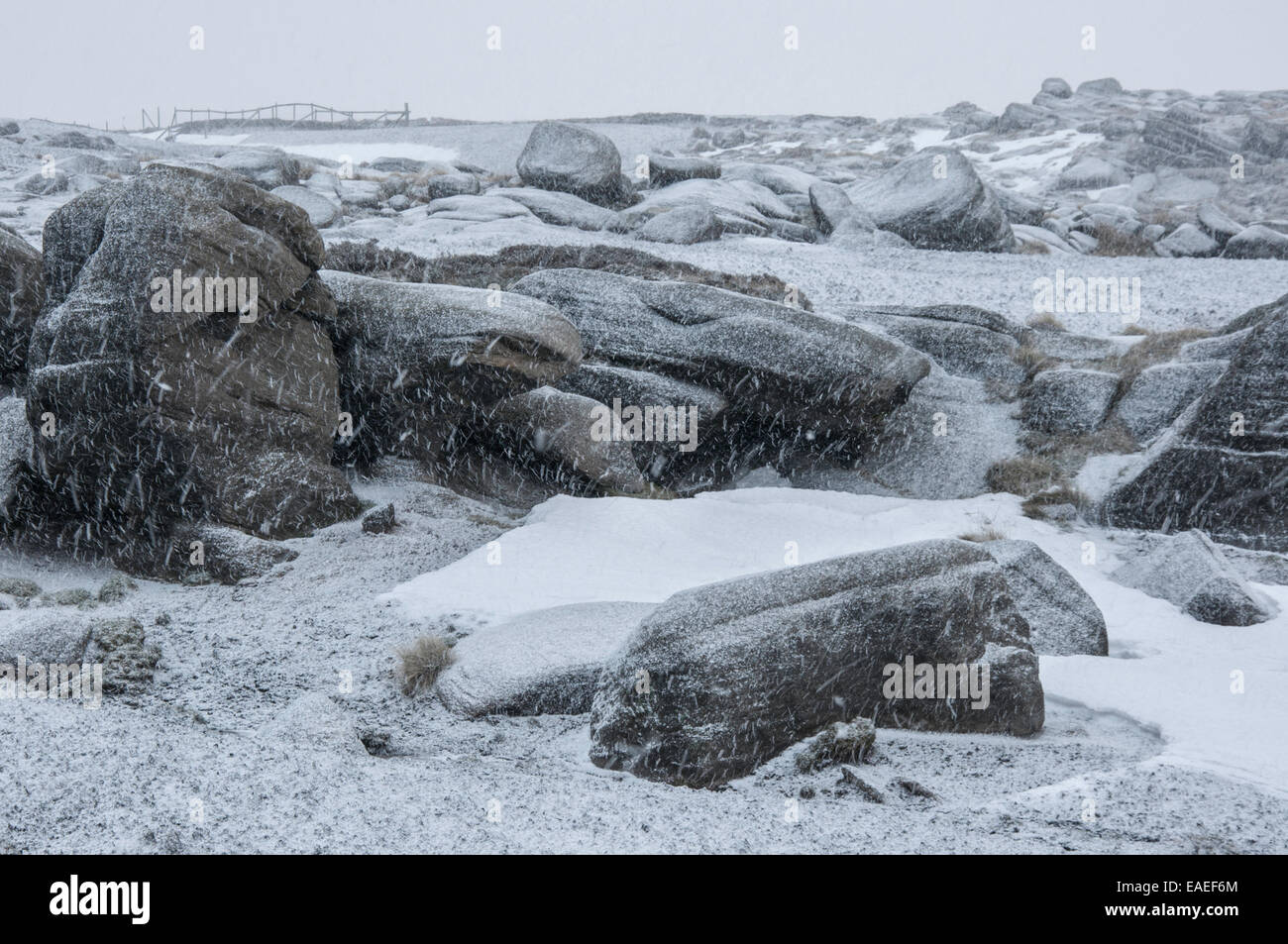 Bleak, snowy conditions on Kinder Scout showing unpredictable weather on these high moorland hills. - Stock Image
