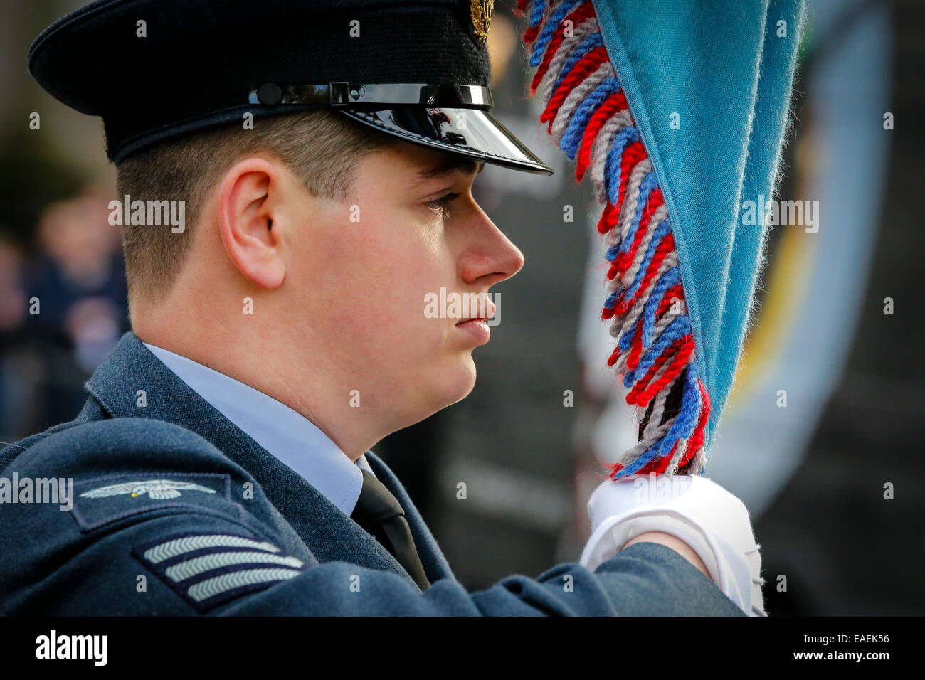 Sergeant in the Royal Air Force, standing to attention while being the standard bearer at a military parade, Glasgow, - Stock Image