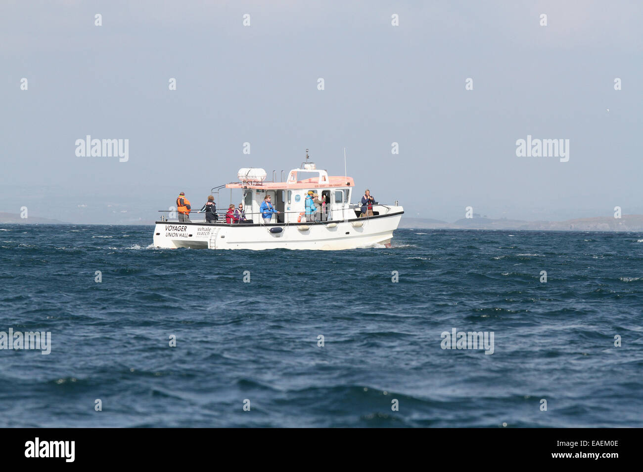 Whale watching Ireland. People standing whale watching from a boat on a sunny day on the Atlantic Ocean off Ireland. - Stock Image