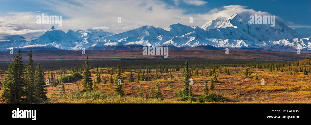 Scenics,Panoramic,Alaska,Mt Mckinley - Stock Image