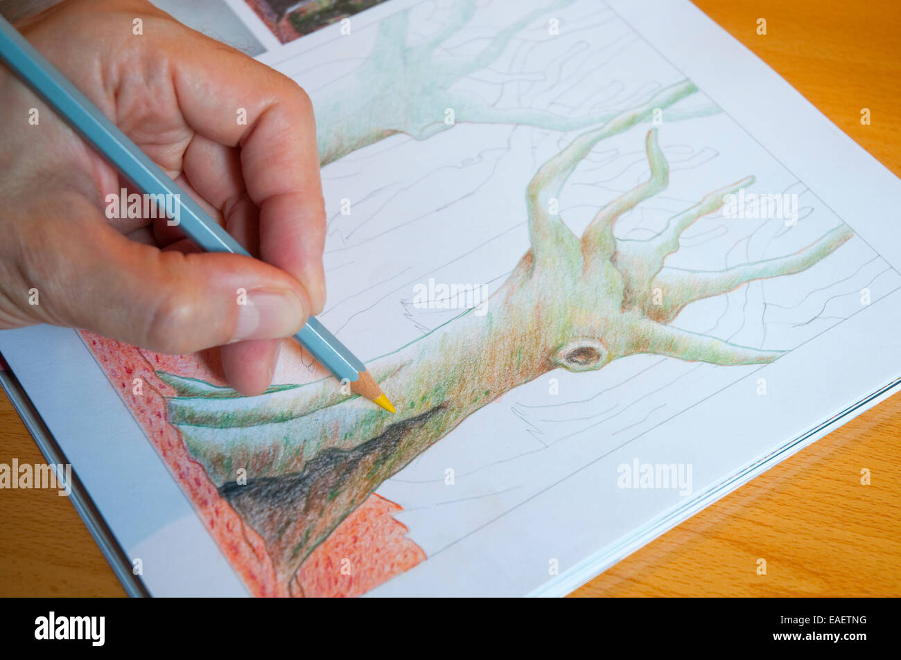 Man's hand drawing with color pencil. Close view. - Stock Image