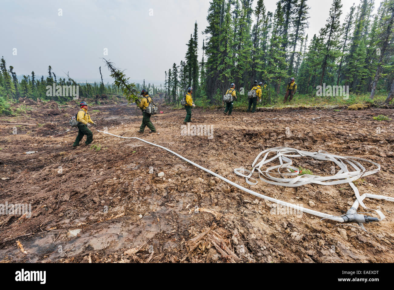 Firefighters work on prepping a controlled burn area on the Eagle Trail forest fire near Tok, Alaska, May, 2010. - Stock Image