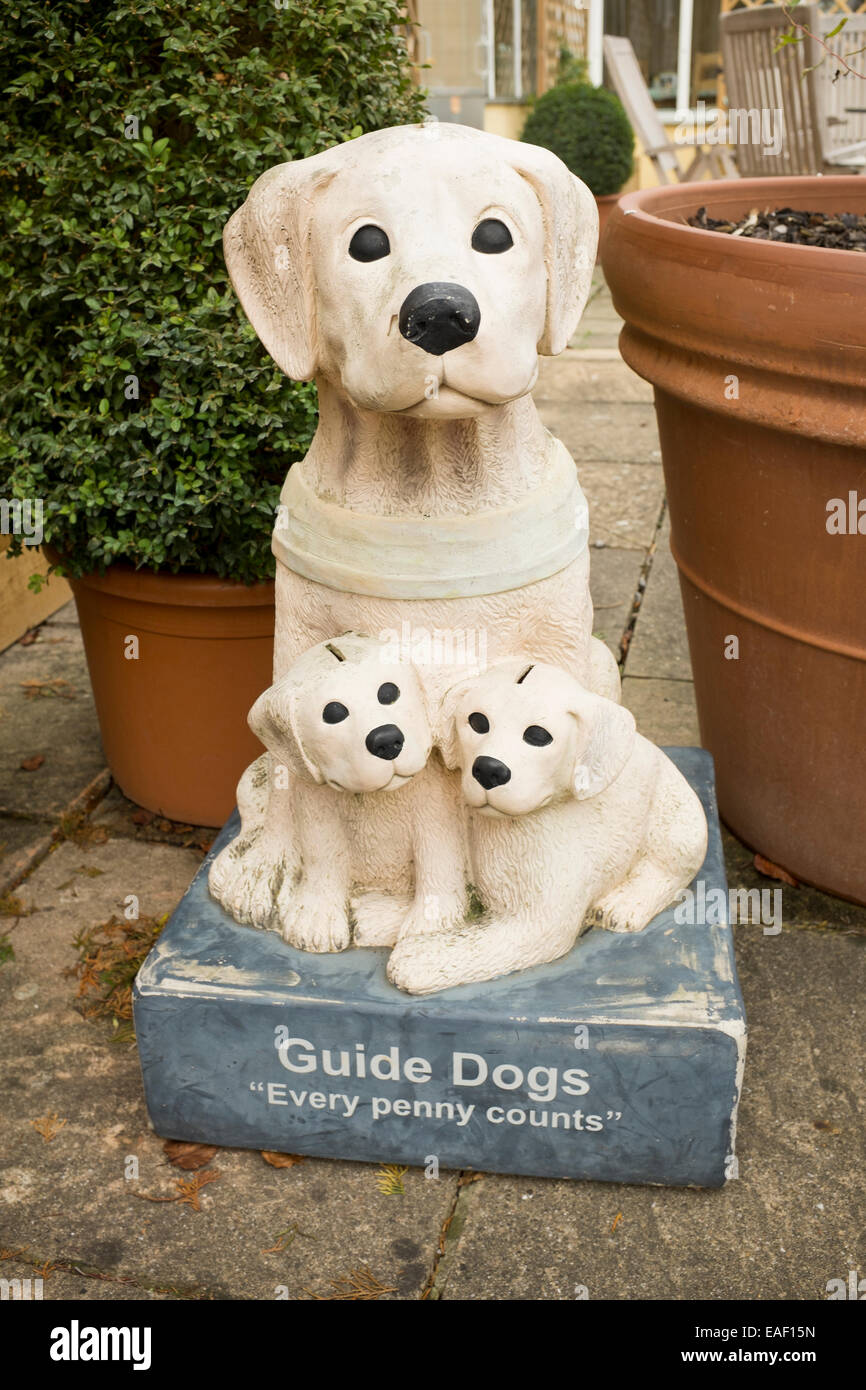 Guide Dogs Charity Box - Stock Image