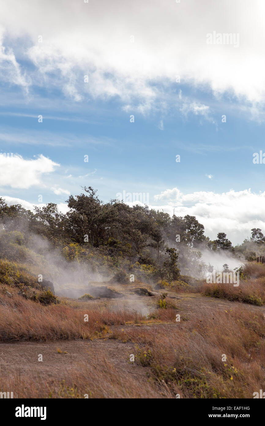 Steam vents near Kilauea volcanic crater Hawaii USA - Stock Image