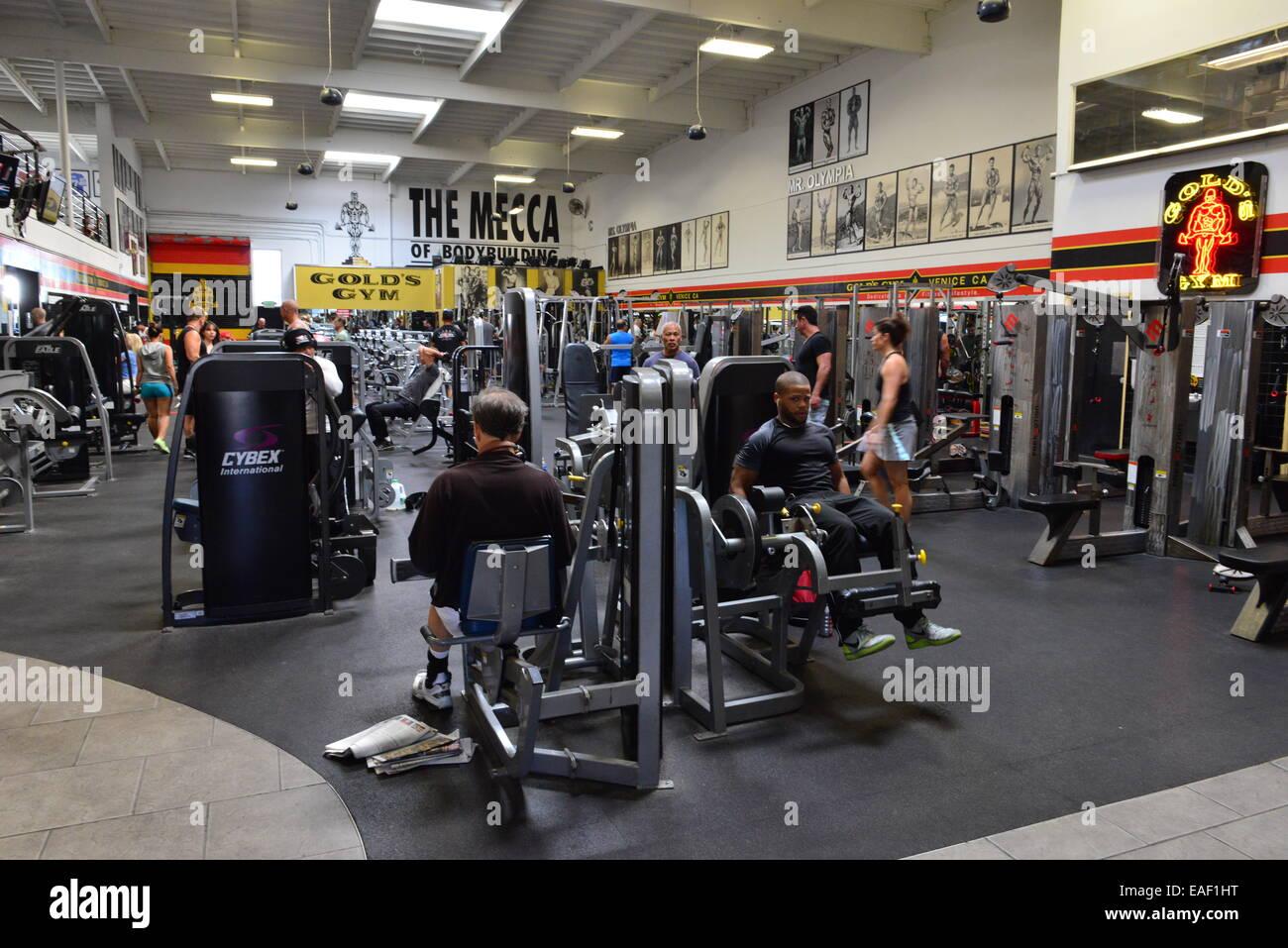 Gold S Gym California Venice Beach