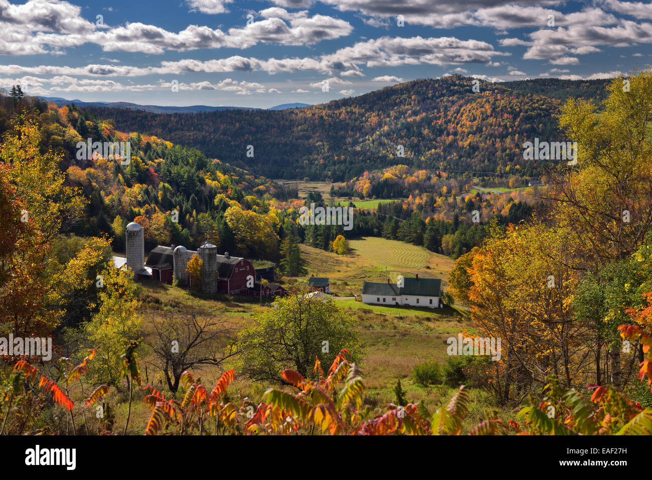 Hillside Acres farm valley fields Barnet Center Vermont USA with trees in colorful Fall foliage and clouds over - Stock Image