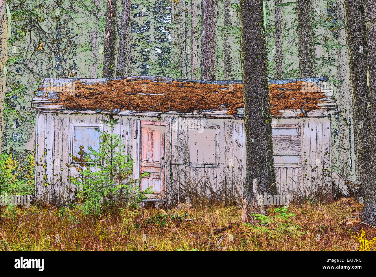Decaying cabin in Oregon's Blue Mountains. - Stock Image