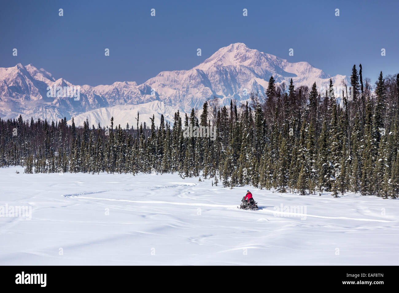 Man on snowmobile on a lake with Mt. Mckinley and Alaska Range in the background, Southcentral, Alaska Stock Photo