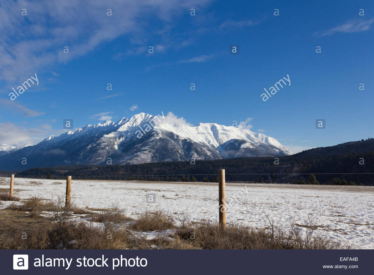 West Rocky Mountains, Mountain Peak West of Fernie, BC - Stock Image