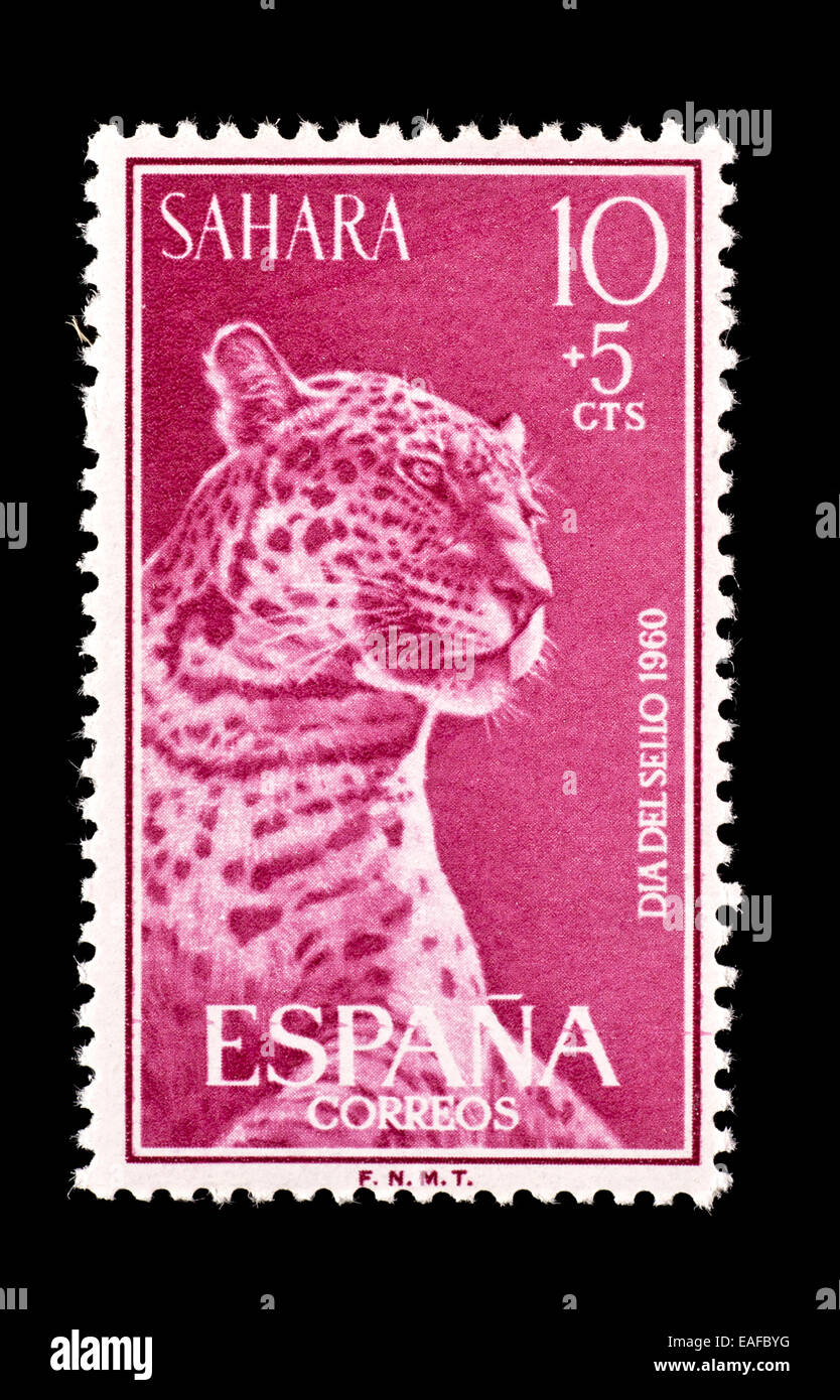 Semi-postal stamp from Spanish Sahara depicting a leopard. - Stock Image