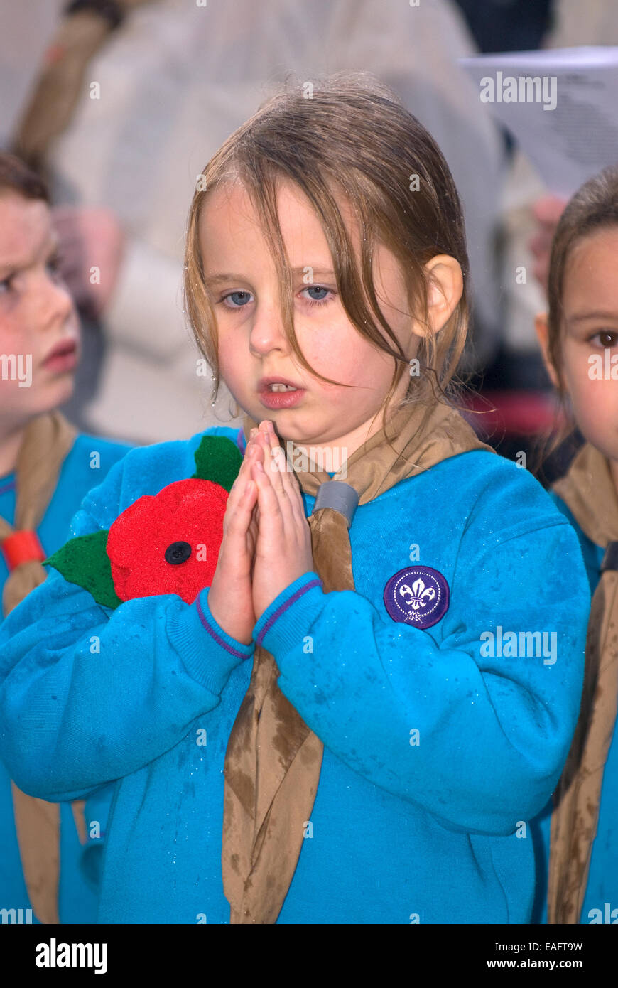 Young girl praying at memorial service on Remembrance Sunday, Four Marks, Alton, Hampshire, UK. - Stock Image