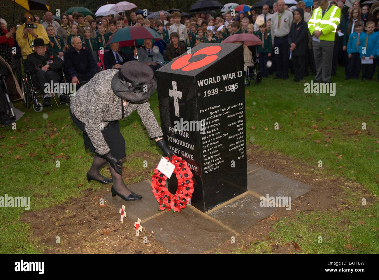 Elderly lady placing wreath beside new war memorial on Remembrance Sunday, Four Marks, Alton, Hampshire, UK. - Stock Image