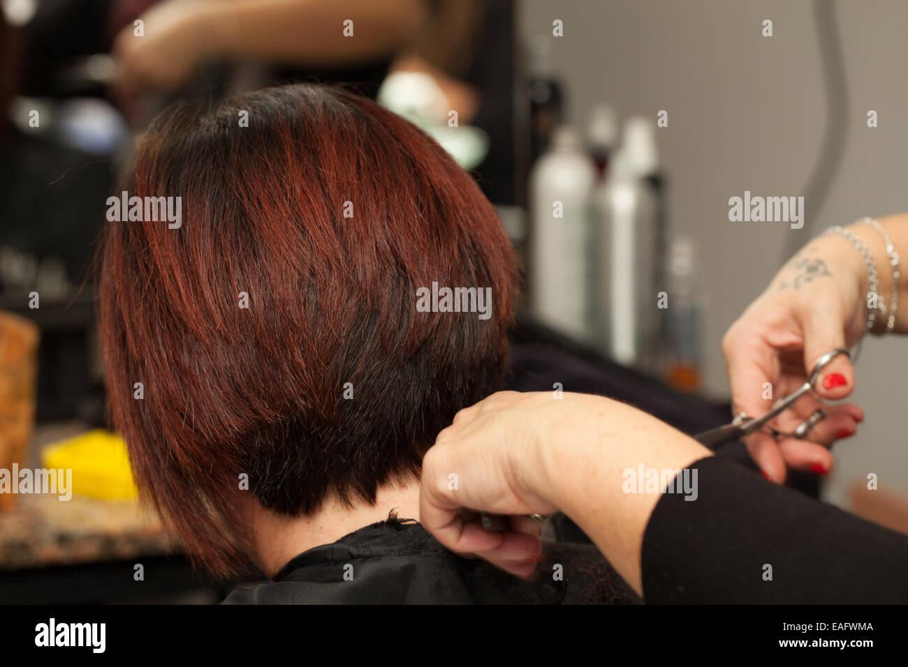 Hair Cut - Stock Image