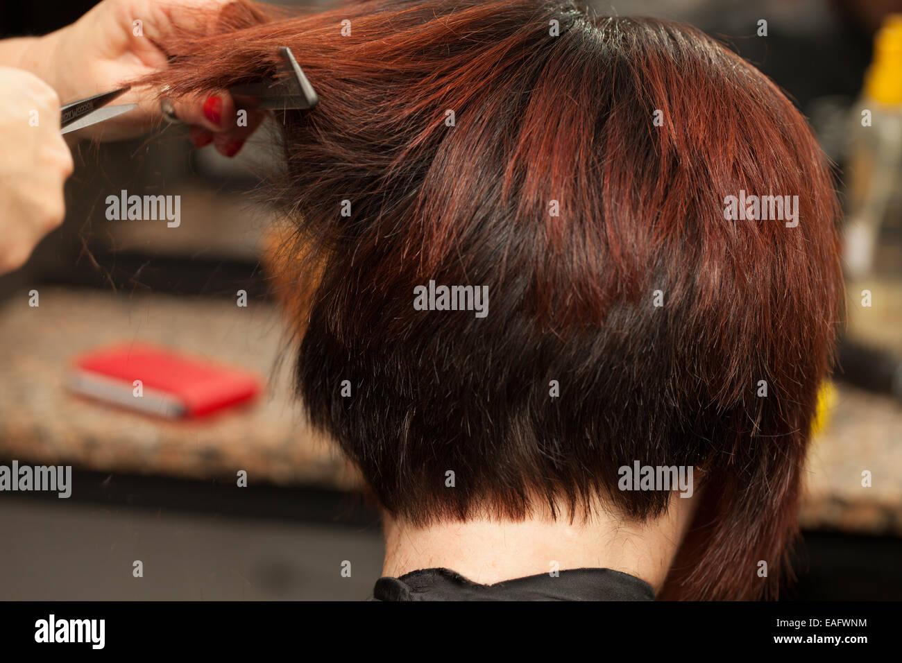 Hair Cut Closeup View - Stock Image