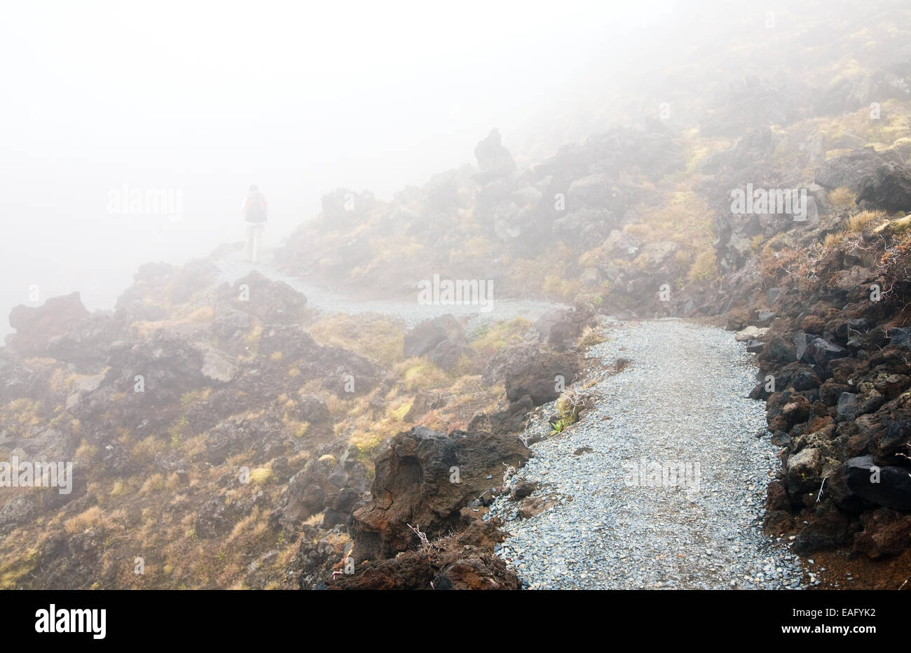 Hiker walking on public track at Tongariro National Park, New Zealand - Stock Image