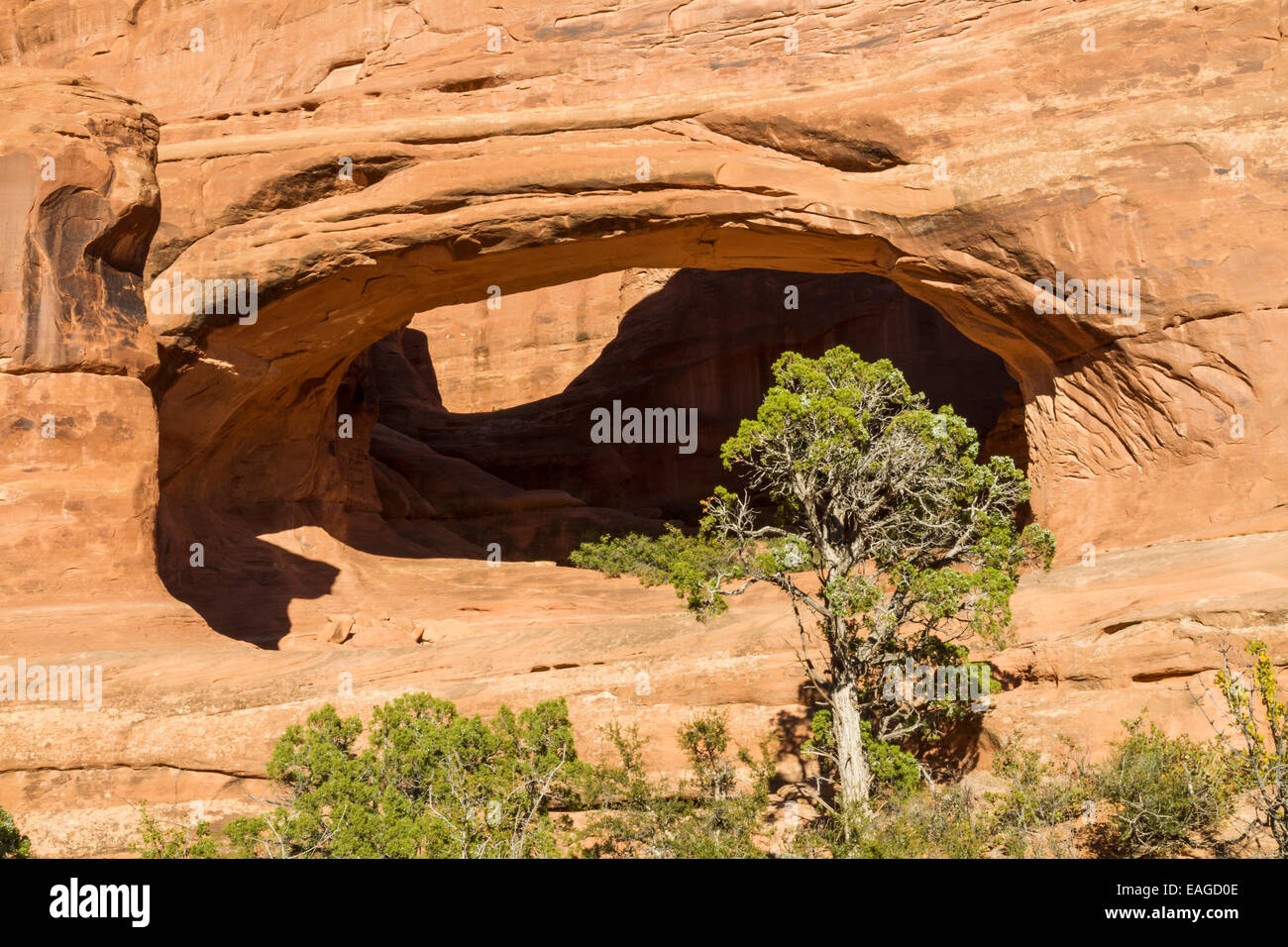 Tower Arch in the Klondike Bluffs area of Arches National Park, Utah. - Stock Image