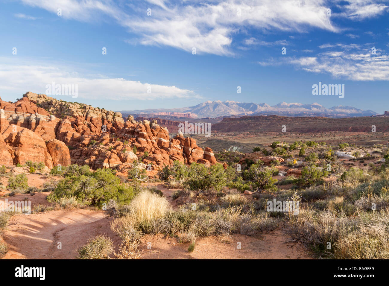The red rock fins of Fiery Furnace in Arches National Park in Utah, with the La Sal Mountains in the background. - Stock Image