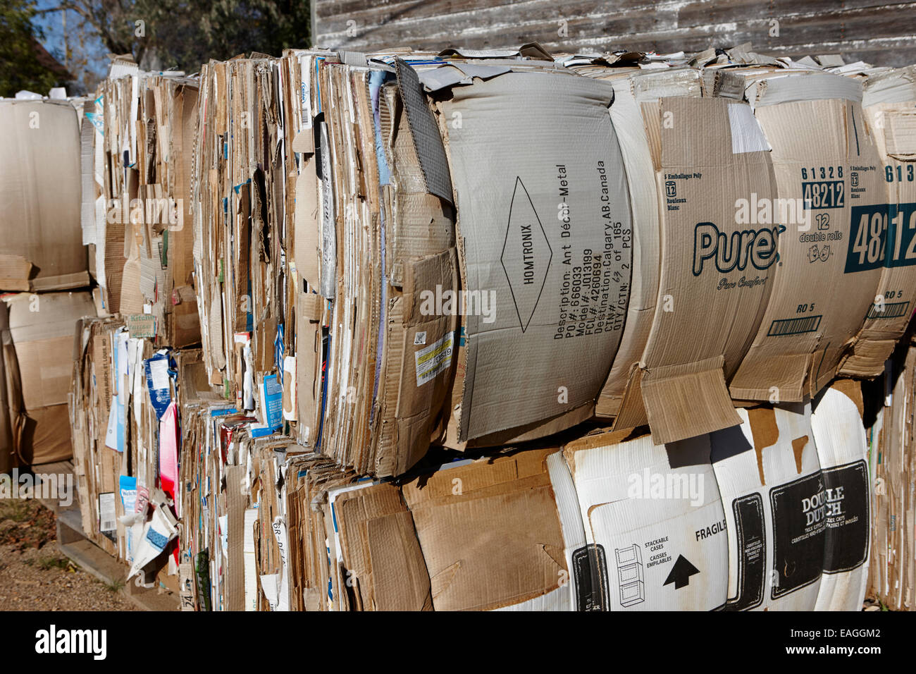 bales of cardboard for recycling Saskatchewan Canada - Stock Image