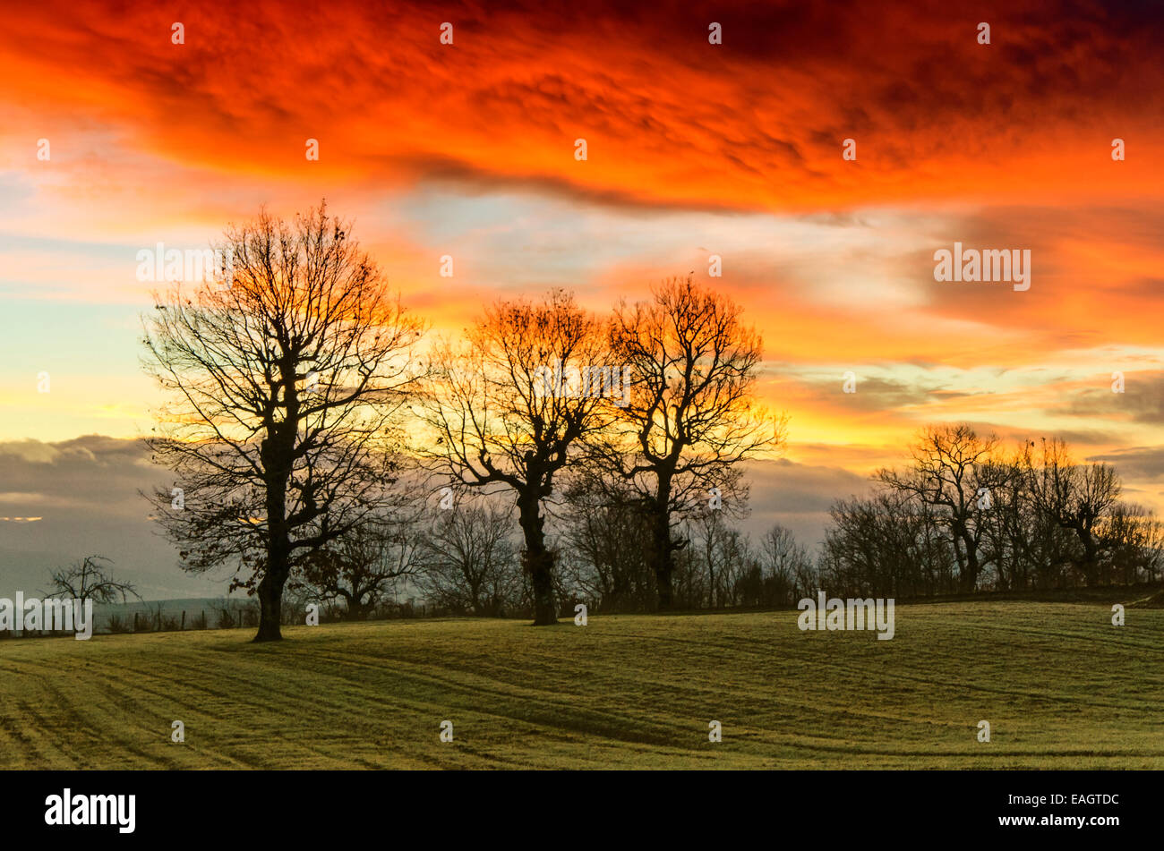 Colorful magical sun rise with trees Greece - Stock Image
