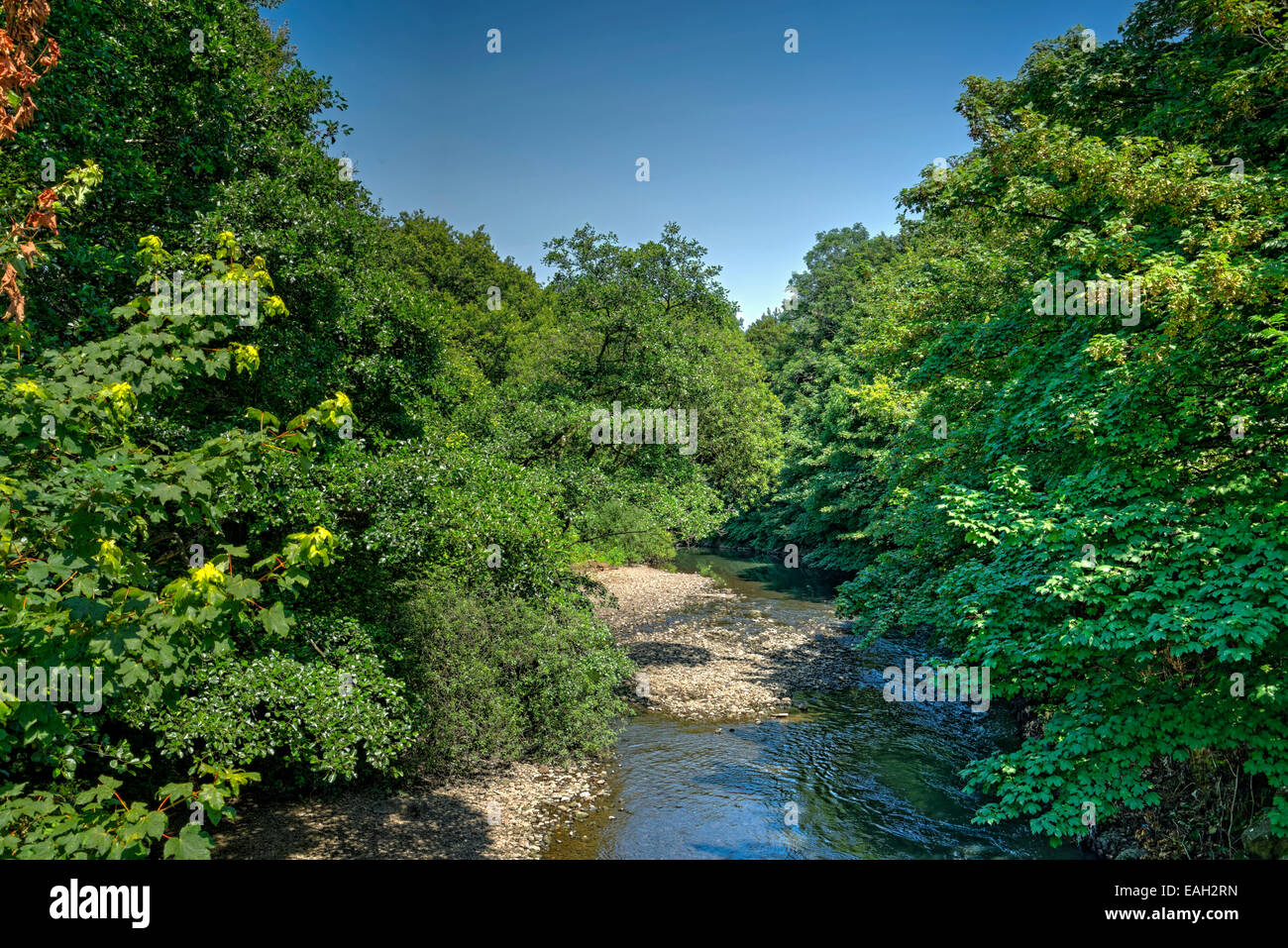 Tree lined river low in water after a long dry spell, exposing the gravel bed of the river. Stock Photo