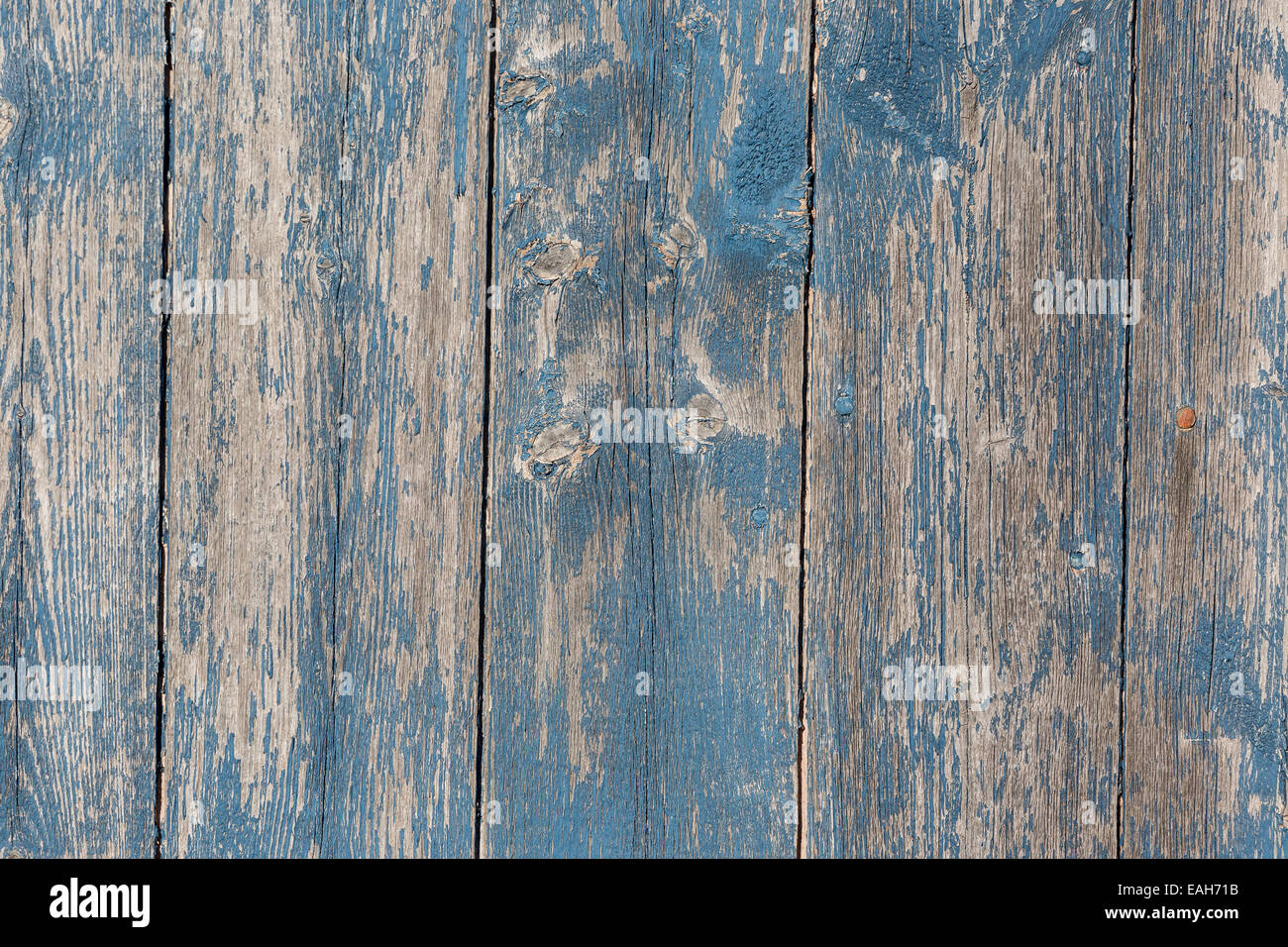 Old wooden barn board with distressed blue paint. - Stock Image