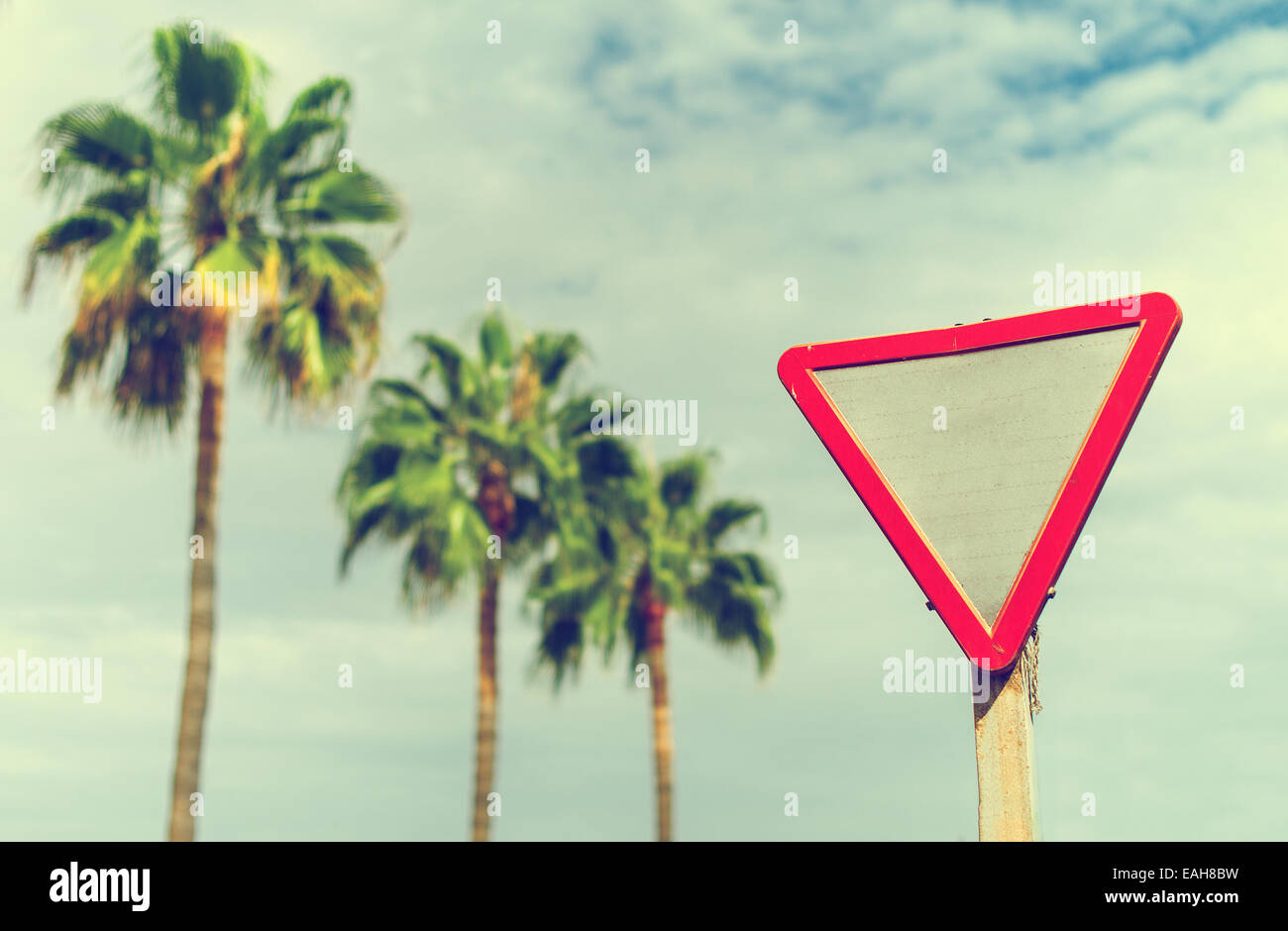 Give way' sign against palms and sky. Stock Photo