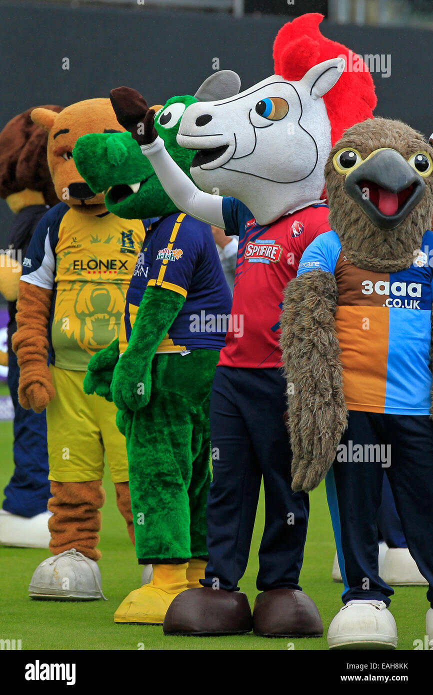 Cricket - Freddie Falcon, Victa, Dewi the Dragon & Hugh Bear await the start of the T20 Finals Day Mascot Race - Stock Image
