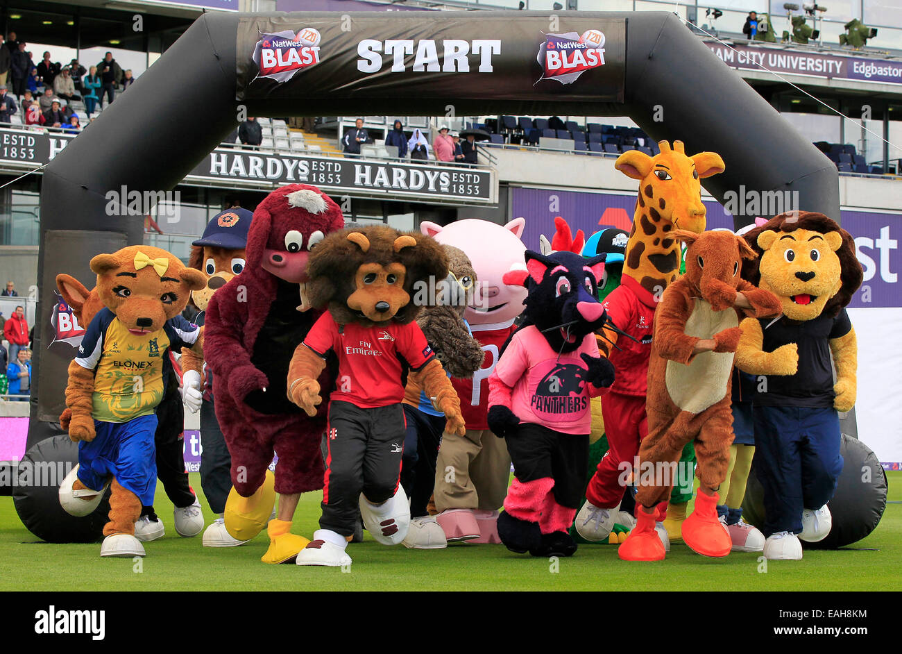 Cricket - The start of the NatWest T20 Blast Finals Day Mascot Race at Edgbaston in 2014 - Stock Image