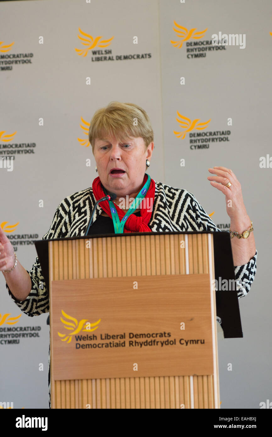 Aberystwyth, Wales, UK. 15th November, 2014. Jennifer Randerson, Baroness Randerson, Welsh Liberal Democrat member - Stock Image