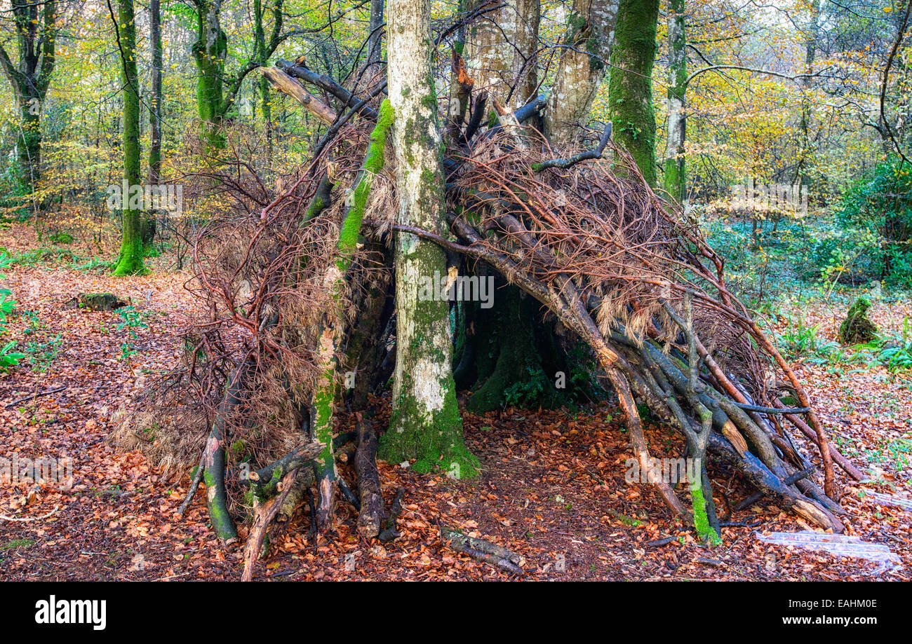 A bivouac survival shelter in the woods made from sticks and branches - Stock Image