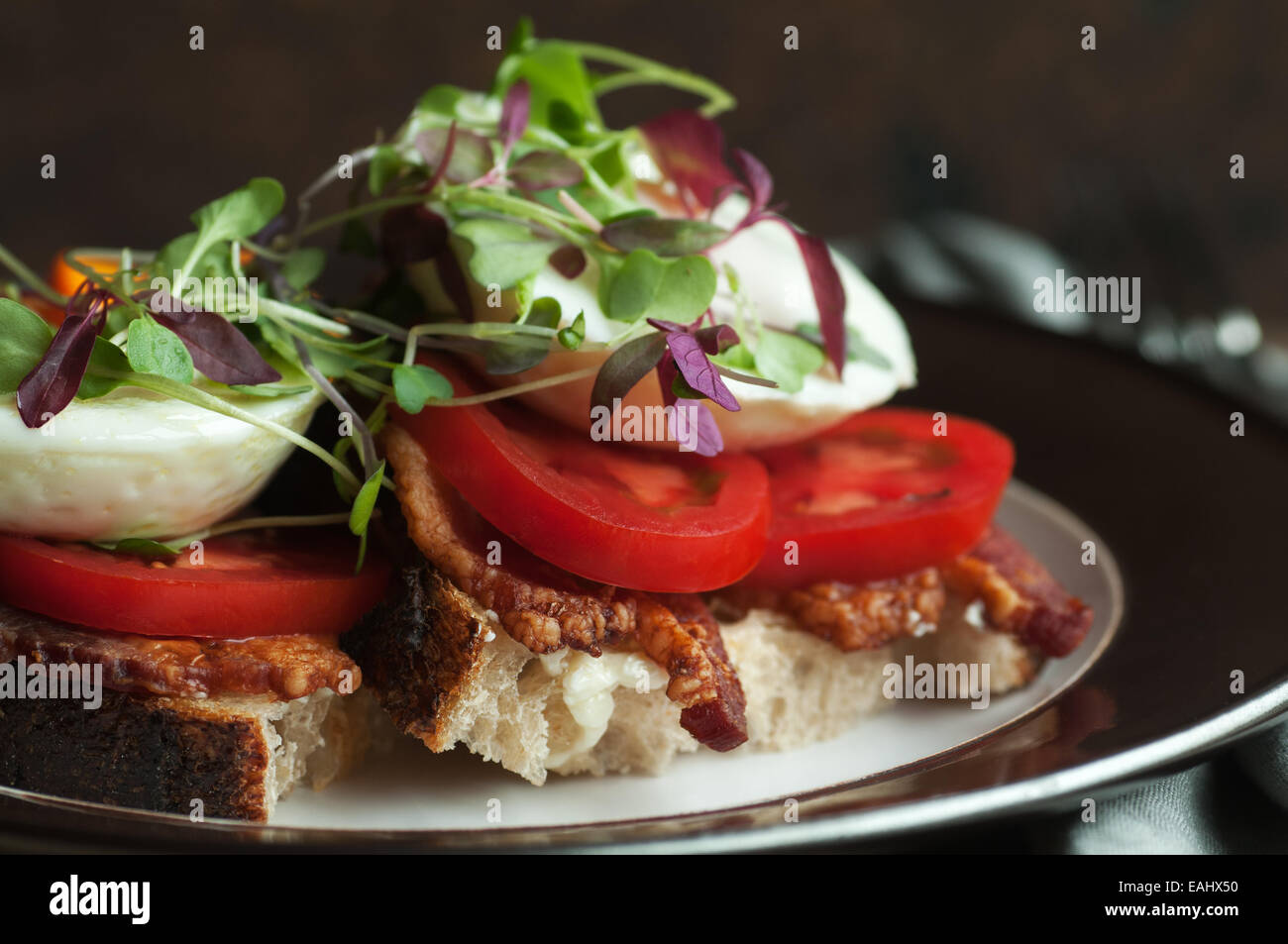 Colorful open faced breakfast sandwich with bacon, tomato, poached egg and sprouts on fresh country bread - Stock Image