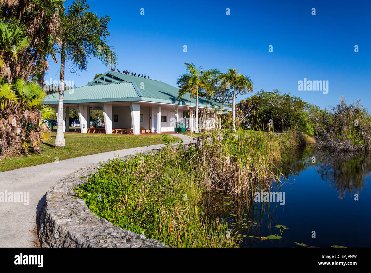 The visitors center along the Anhinga Trail in Everglades National Park, Florida, USA. - Stock Image