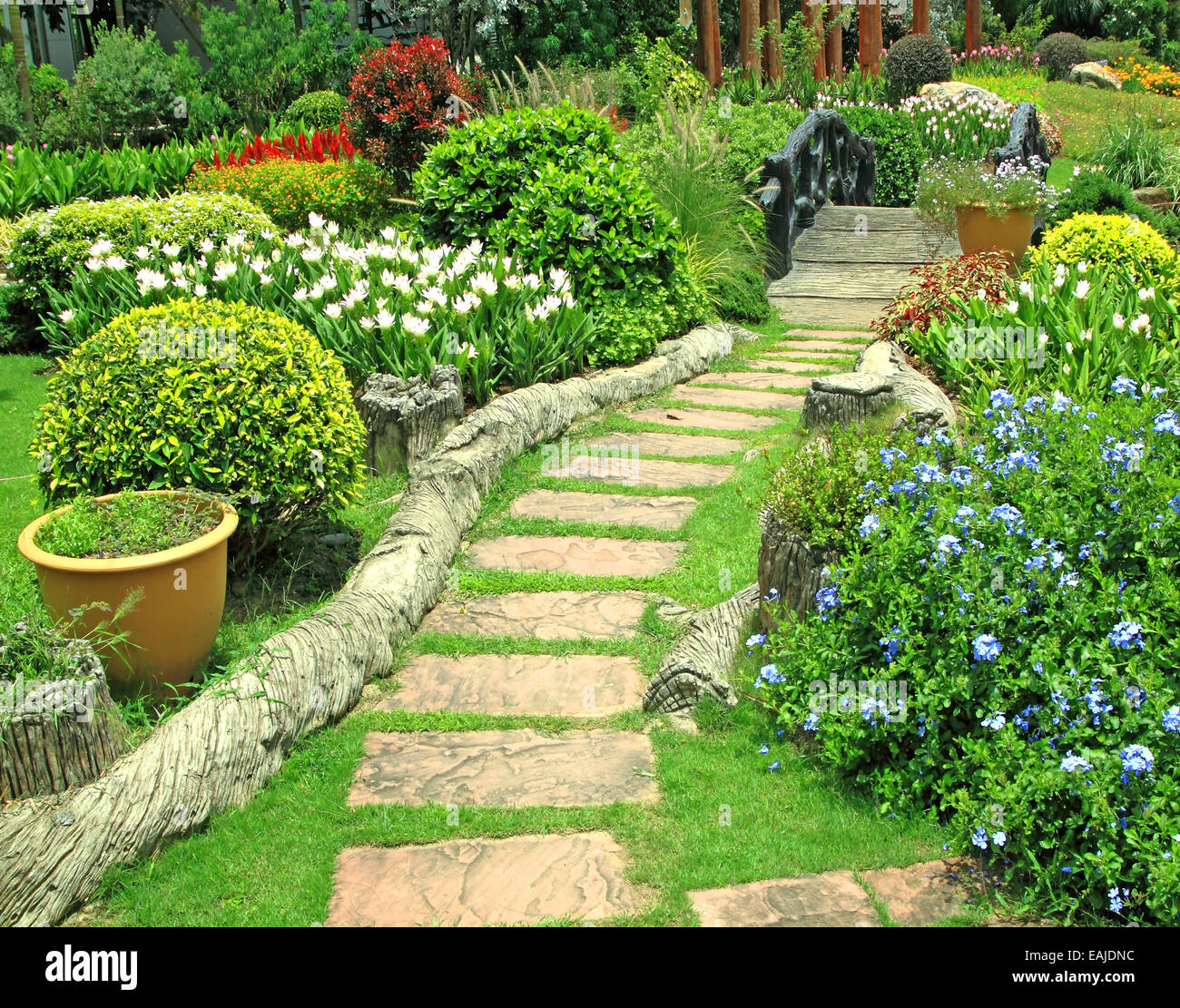 natural green flower garden this forms the background stock photo alamy https www alamy com stock photo natural green flower garden this forms the background 75393960 html