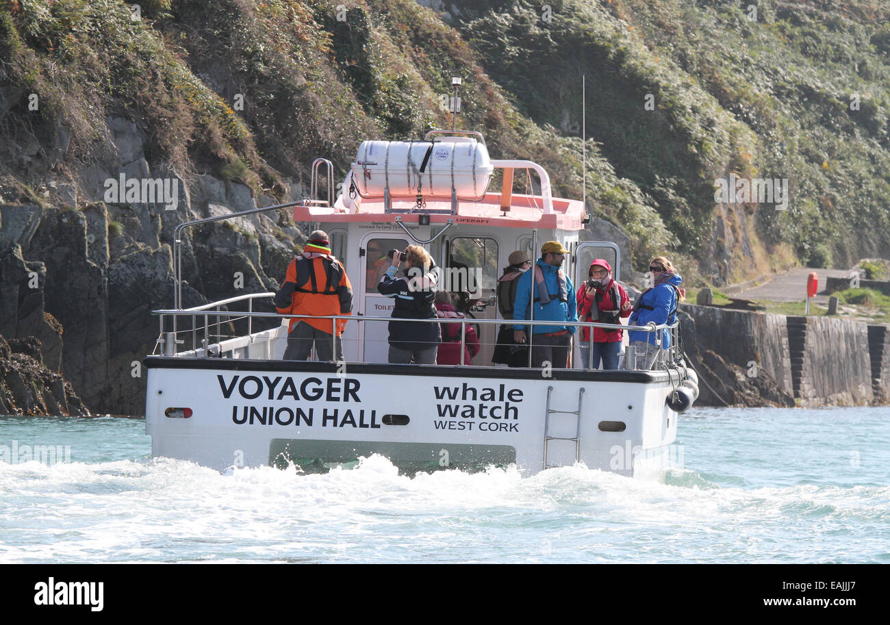 Whale watchers on Nic Slocum's vessel 'Voyager' on a whale watching and sight seeing trip off Cape Clear - Stock Image