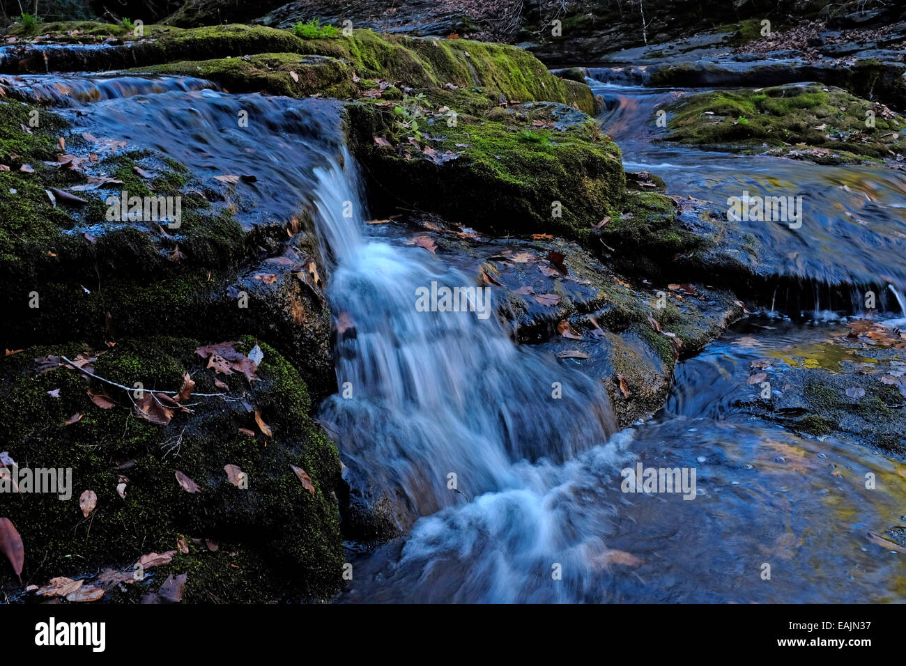 Rushing stream near Dingmans Falls, Pennsylvania - Stock Image