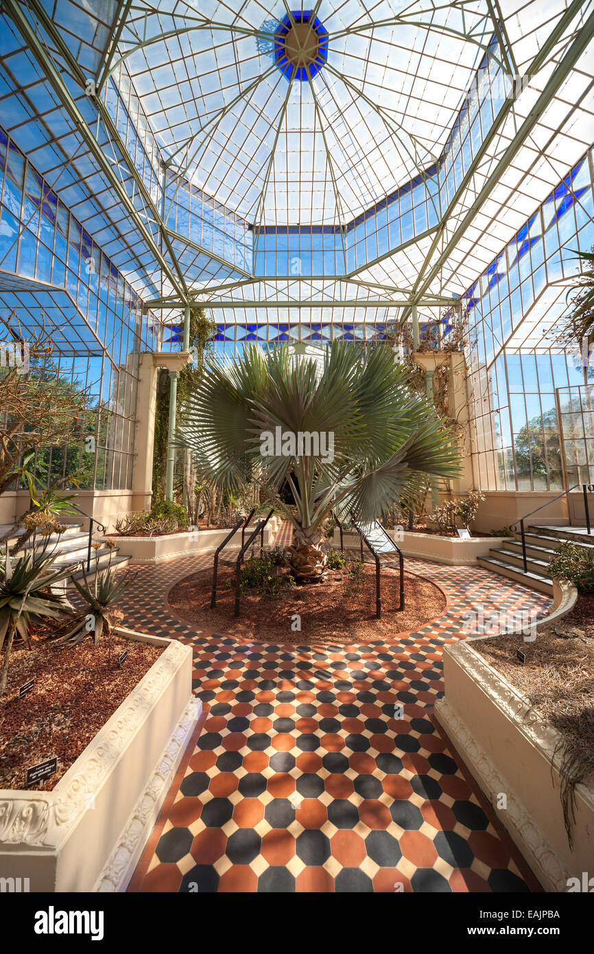 Adelaide botanic garden palm house old victorian greenhouse from stock photo 75400734 alamy - Inside mobel bremen ...