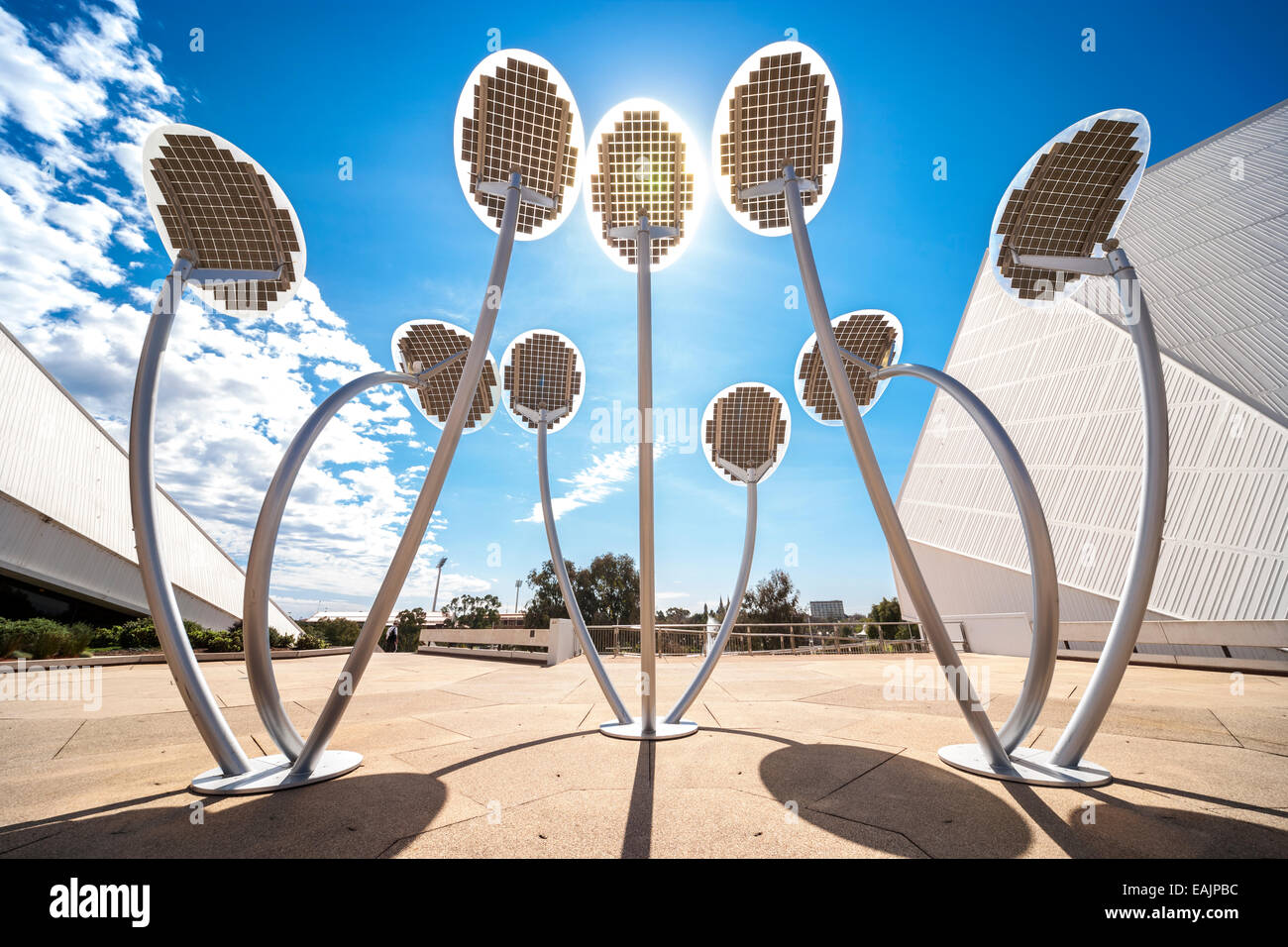 Solar powered led lights as street lighting aka The Solar Mallee Trees sculpture. Adelaide South Australia - Stock Image