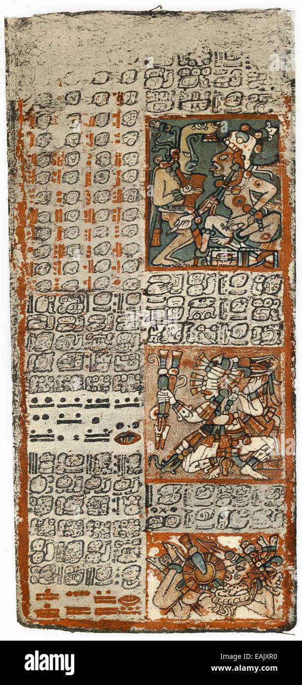 page of the Dresden Codex or Codex Dresdensis, a manuscript of the Maya from the 13th century, eine Seite des Codex - Stock Image