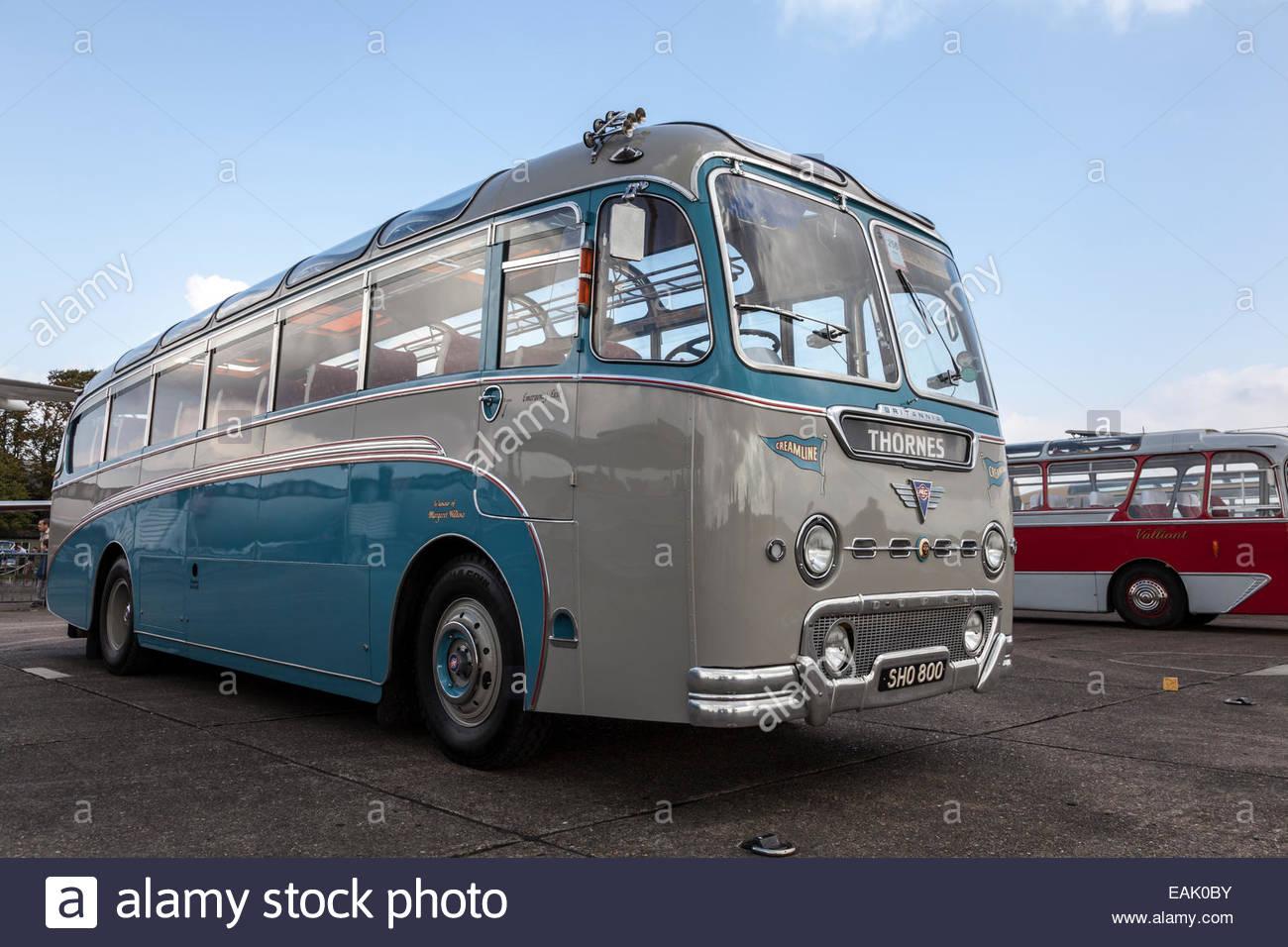 1957 AEC Reliance Coach - Stock Image