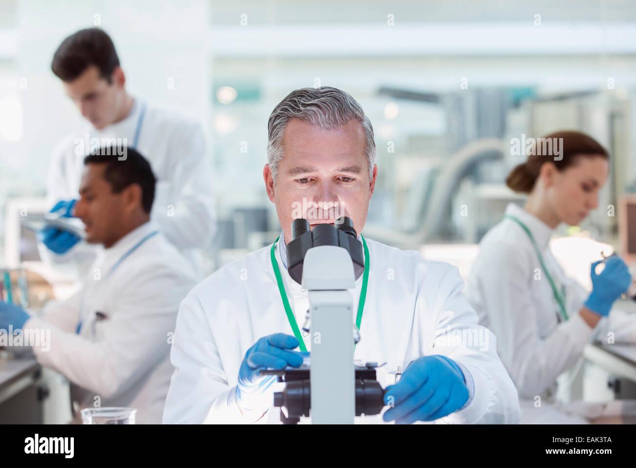 Scientist examining sample under microscope in laboratory - Stock Image