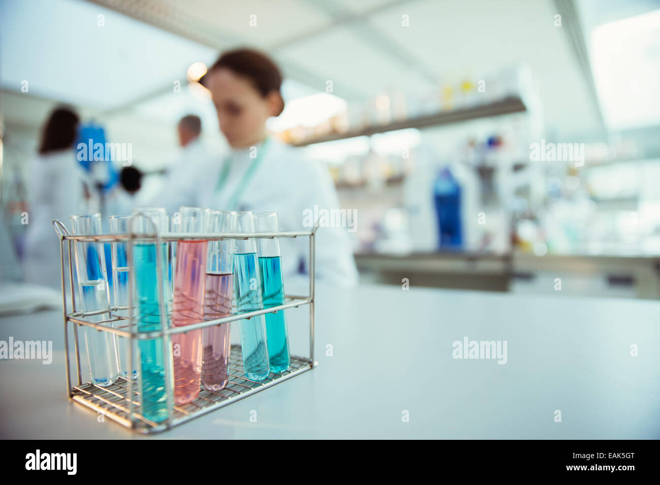 Close up of test tubes in rack in laboratory - Stock Image