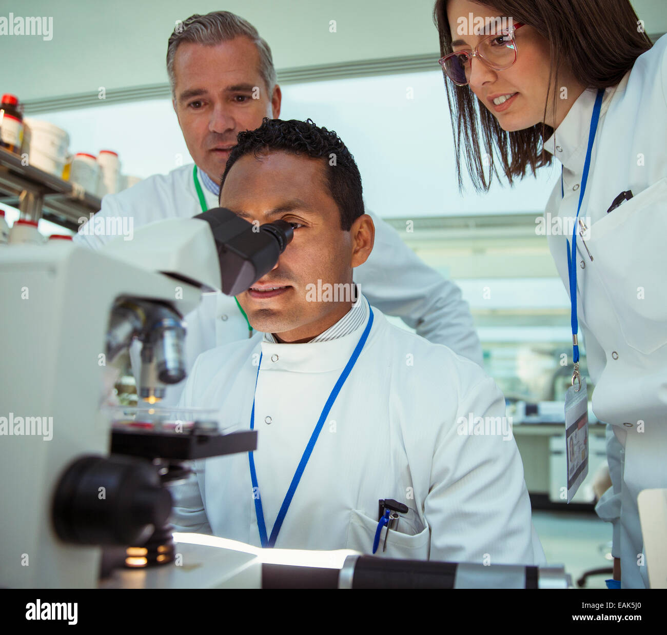 Scientists examining sample under microscope in laboratory - Stock Image