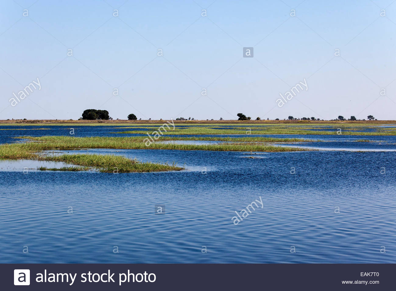 River landscape in the Namibian border area, Chobe National Park, North-West District, Botswana - Stock Image