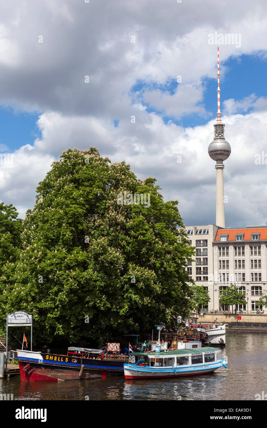 Ships on the Spree River, TV Tower at the rear, Berlin, Berlin, Germany - Stock Image