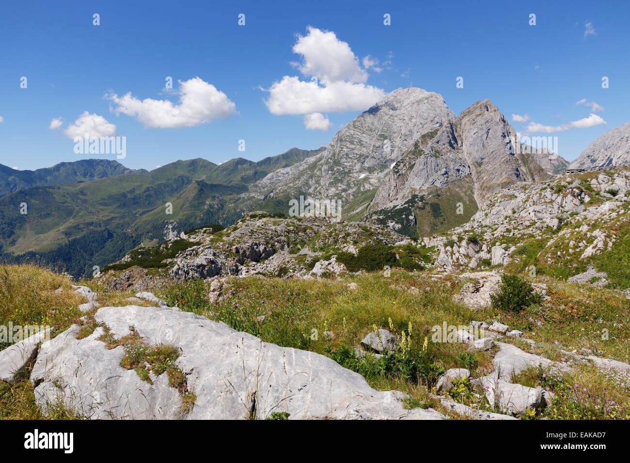 Summit plateau of Kleiner Pal Mountain, view towards Cellon Mountain, Carnic Alps, Kötschach-Mauthen, Bezirk - Stock Image