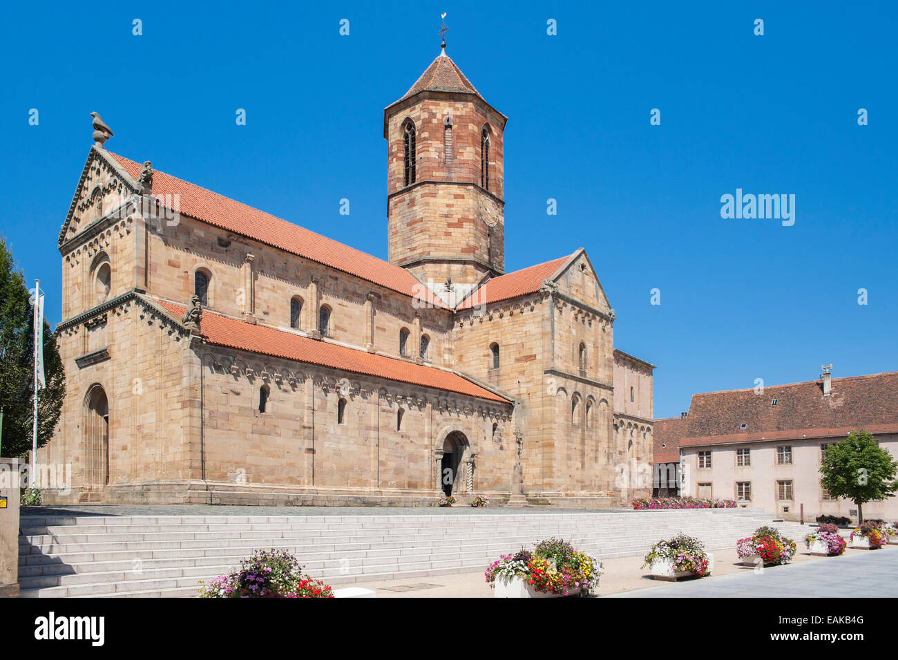 Église Saints-Pierre-et-Paul or St. Peter and St. Paul's Church, Rosheim, Département Bas-Rhin, Alsace, - Stock Image