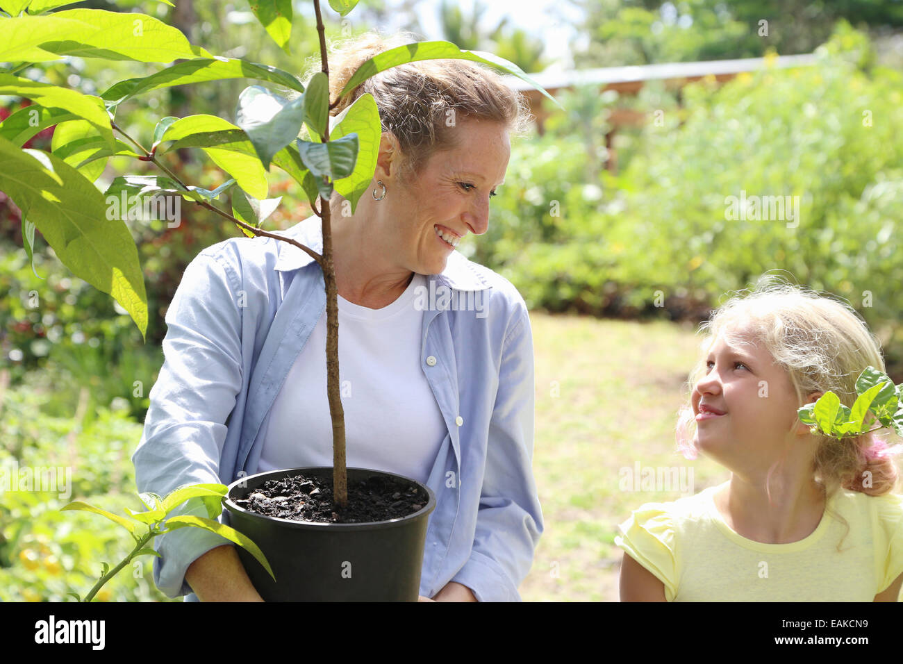 Woman and girl with tree seedling in sunny garden - Stock Image
