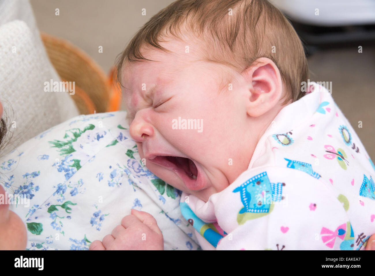 Three day old newborn baby girl yawning Stock Photo