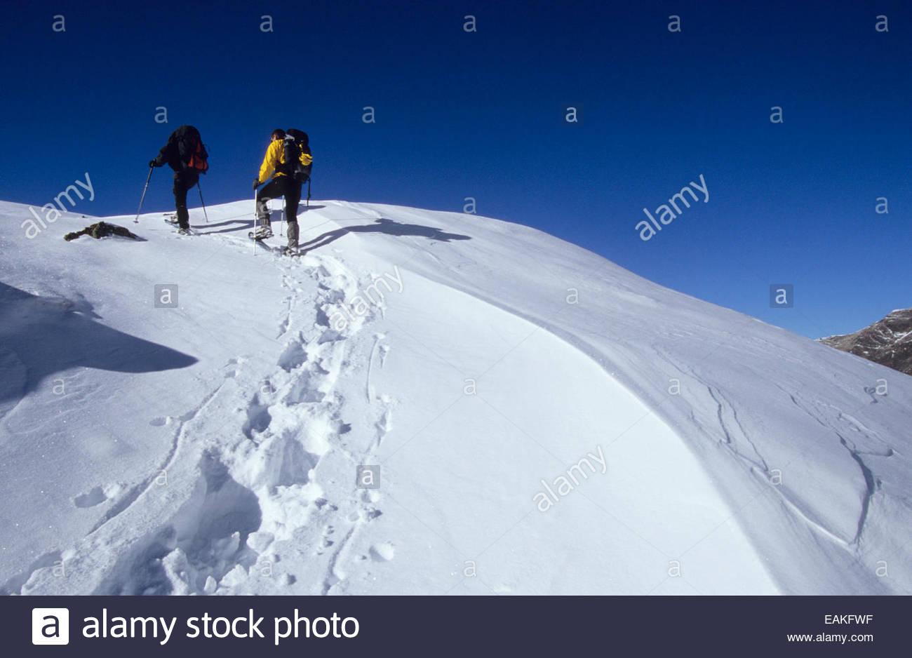 Snowshoeing men, Hautes-Pyrenees, France. Stock Photo