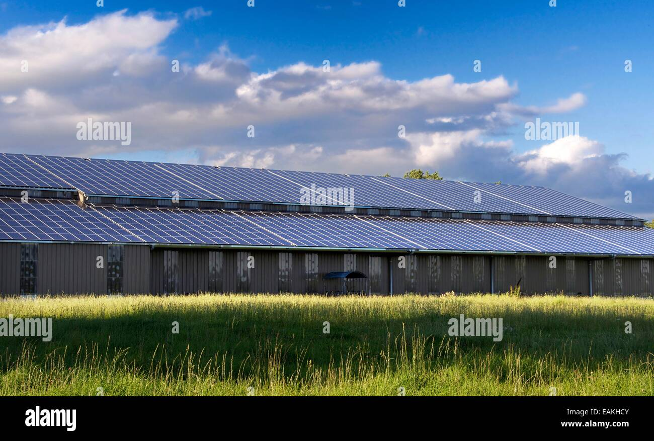 Solar panels on the roof of a shed, Cantal, Auvergne, France - Stock Image